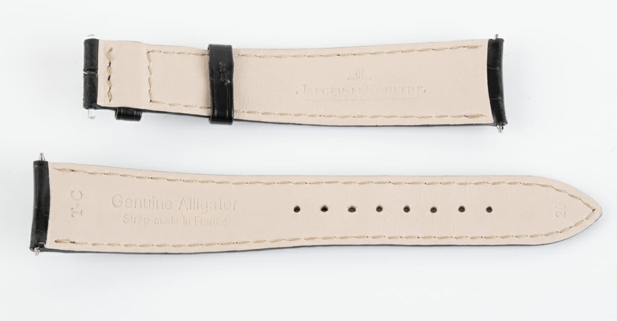 Rear / Band View of Alligator Strap