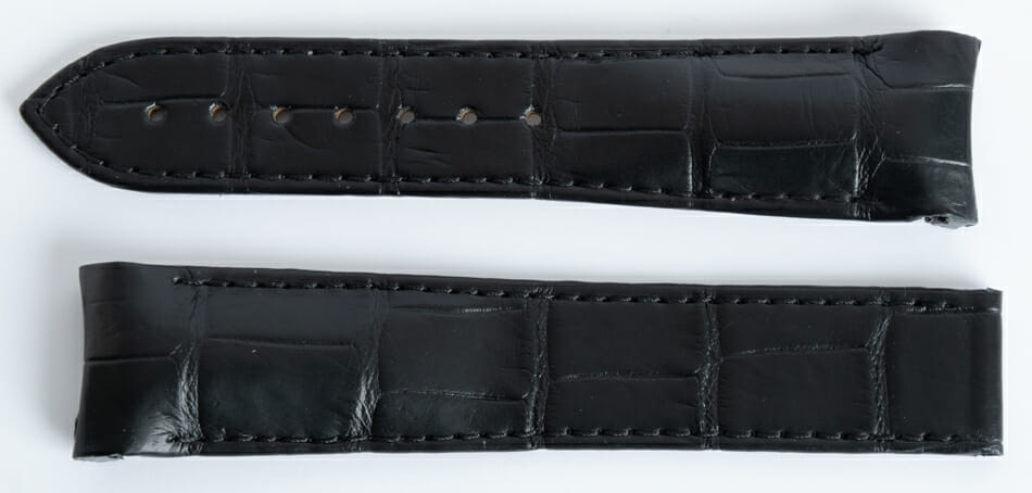Front View of Alligator Strap