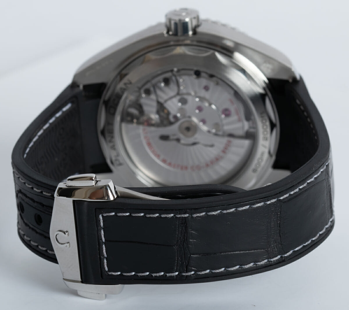 Rear / Band View of Planet Ocean GMT 600M